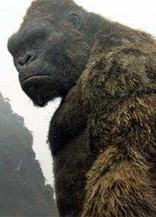 """Warner Bros. готовится к переносу премьеры """"Годзиллы против Кинг Конга"""""""