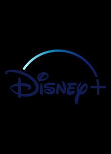 Потоковый сервис Walt Disney переманил ключевого руководителя Netflix