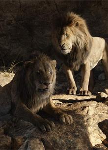 Король лев сокрушил Капитана Марвел