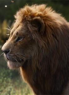"""""""Король лев"""" стал лидером премии за спецэффекты"""
